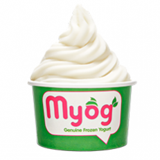 Myog premium frozen yogurt in Sea Point, Cape Town